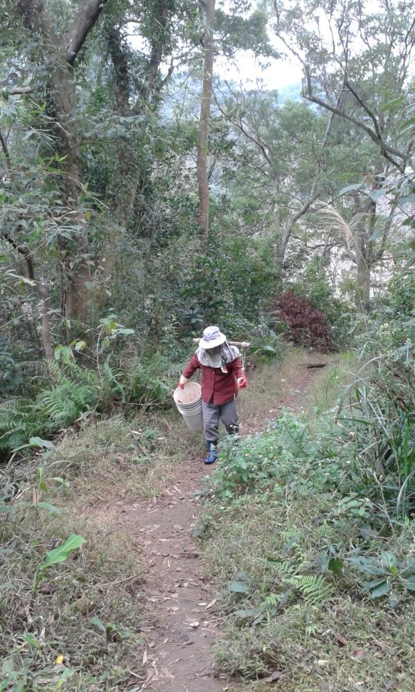 Tradicionális kalapban dolgozó földműves