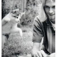 Kurt Cobain & Macska