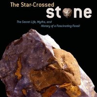 ;TOP; The Star-Crossed Stone: The Secret Life, Myths, And History Of A Fascinating Fossil. basica resemble charming product embalaje