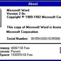 Microsoft: minuszos hír 1993-ból