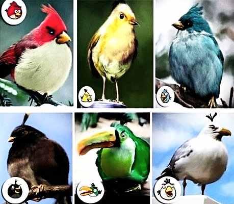 angrybirds_1357077397.jpg_459x400