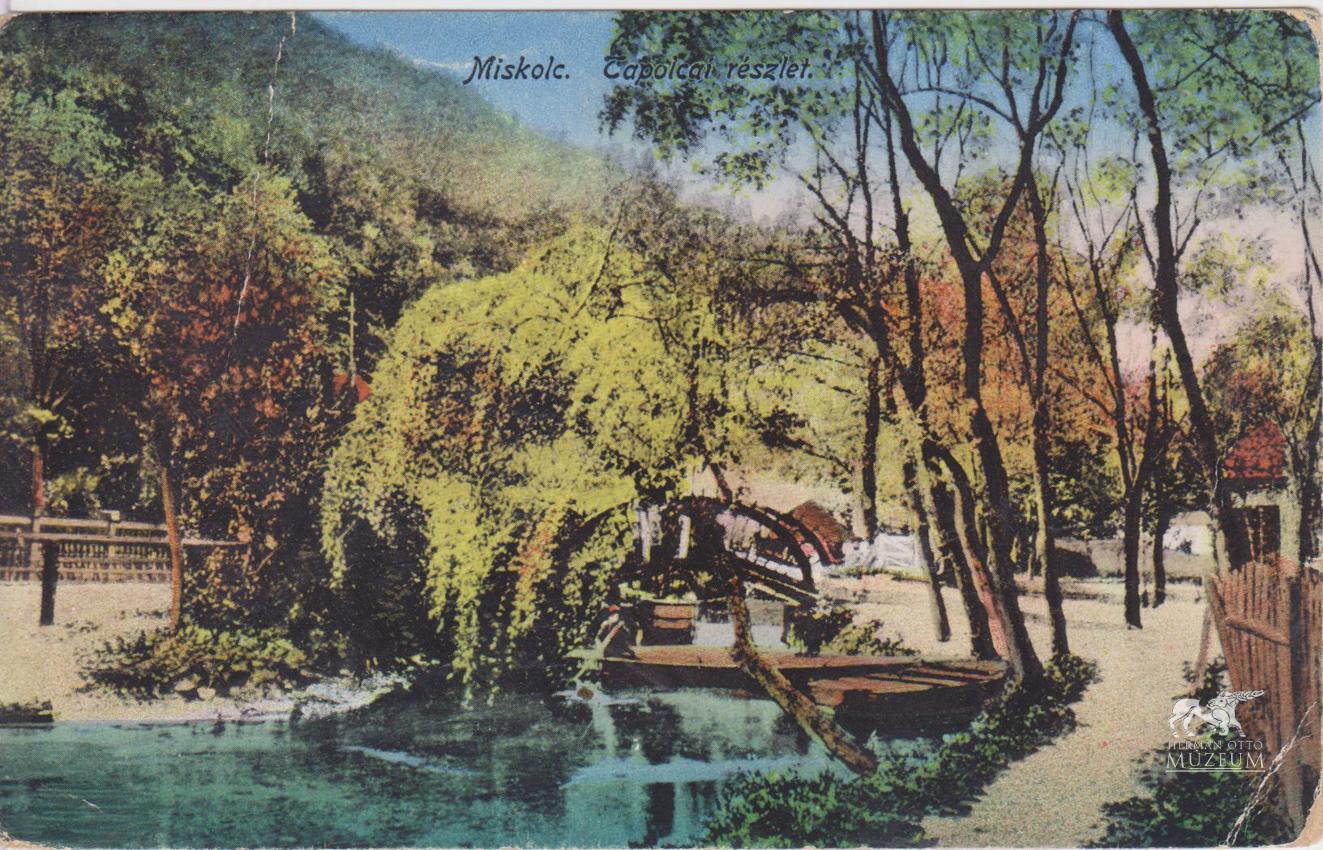 Az országút másik oldalán is eredt néhány forrás, ami az ún. Hattyú-tavat (Békás-tónak is mondják) táplálta.
