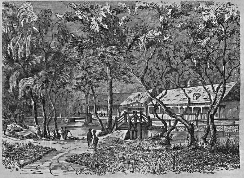 vasujstapolca1869_34.jpg