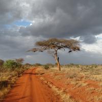 És akkor végre Afrika :)