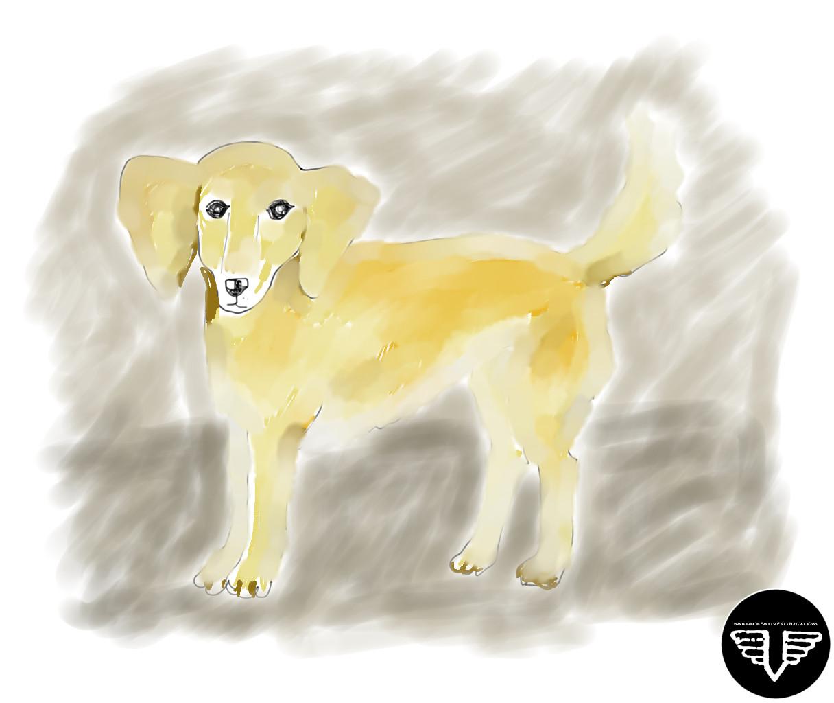 kutya_logoval.jpg