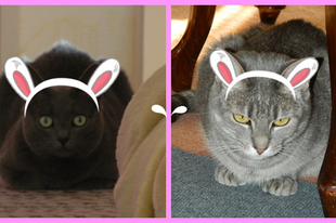 Happy Easter Furriends!