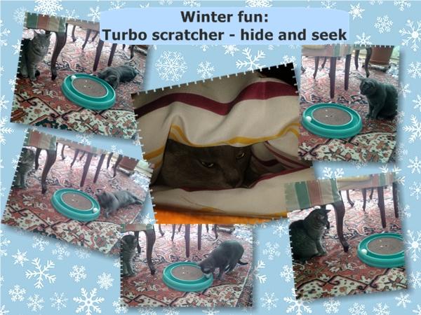 Missy winter fun