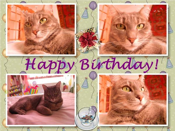 Lizzy's birthday card