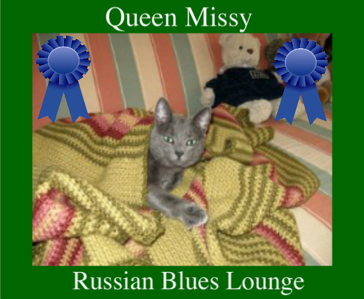Missy winner of winter photo competition