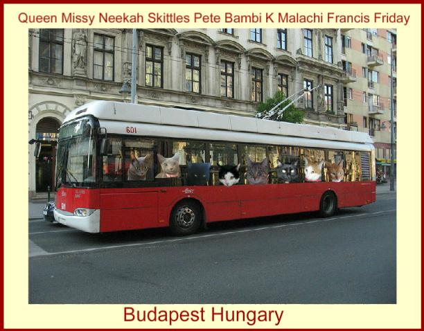 trolleyride_Missy.jpg