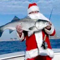 Boldog Karácsonyt, és Halakban Gazag Új Esztendőt Minden Kedves Tibinek!