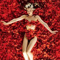 Nézd meg az Amerikai szépséget! (1999)