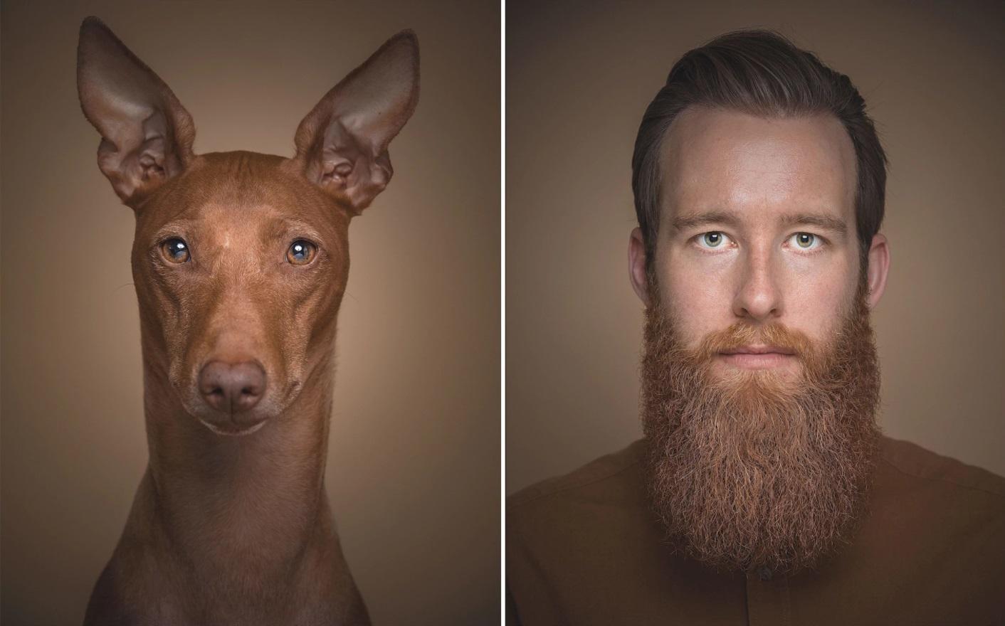 kutya-1.jpg