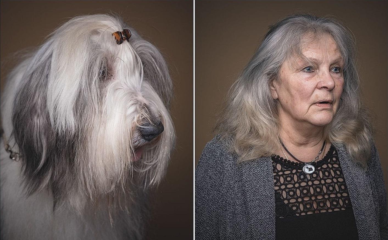 kutya-2.jpg