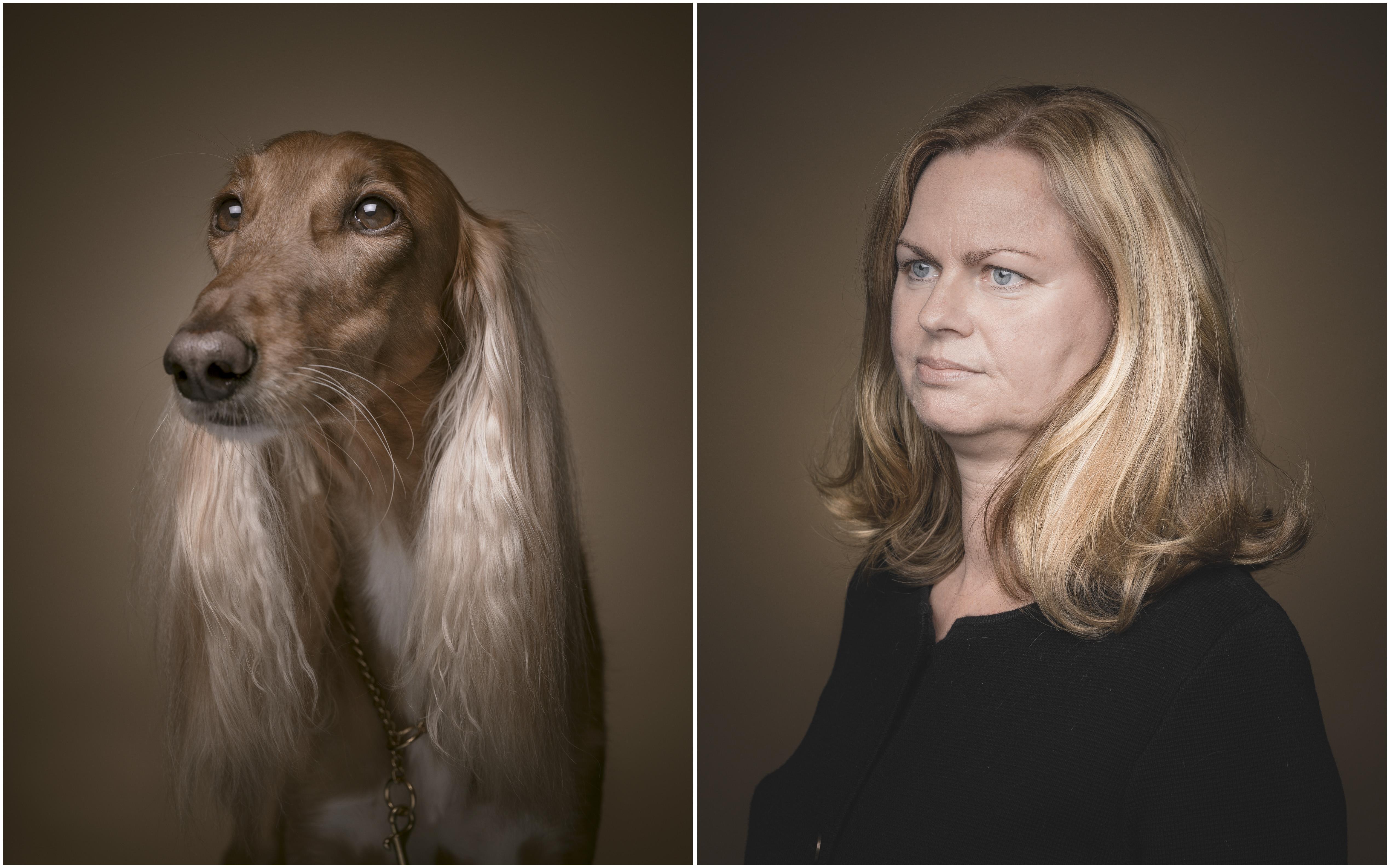 kutya-9.jpg