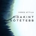 Veres Attila: Odakint sötétebb