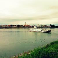 Mohács, Duna