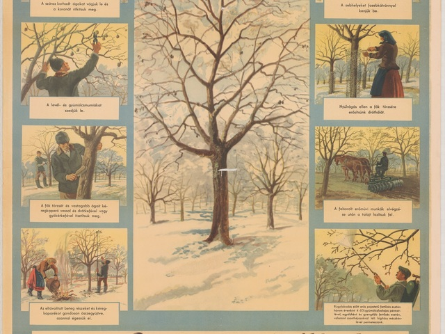 Kert - tél - december