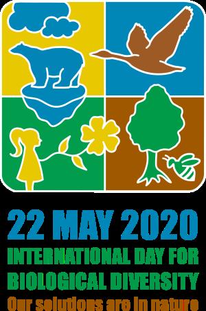 idb-2020-logo-en-vertical-web.png