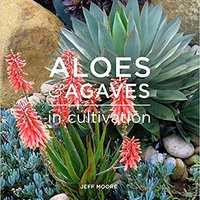 ((BETTER)) Aloes And Agaves In Cultivation. Enlaces Maldives Llevar James Island scalable