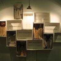 DIPLOMA 2010-2011 - kiállítás képekben