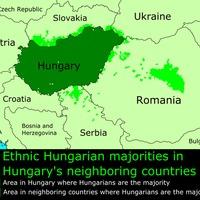 Állásfoglalás a kettős állampolgárságról és a külhoni magyarok szavazásáról