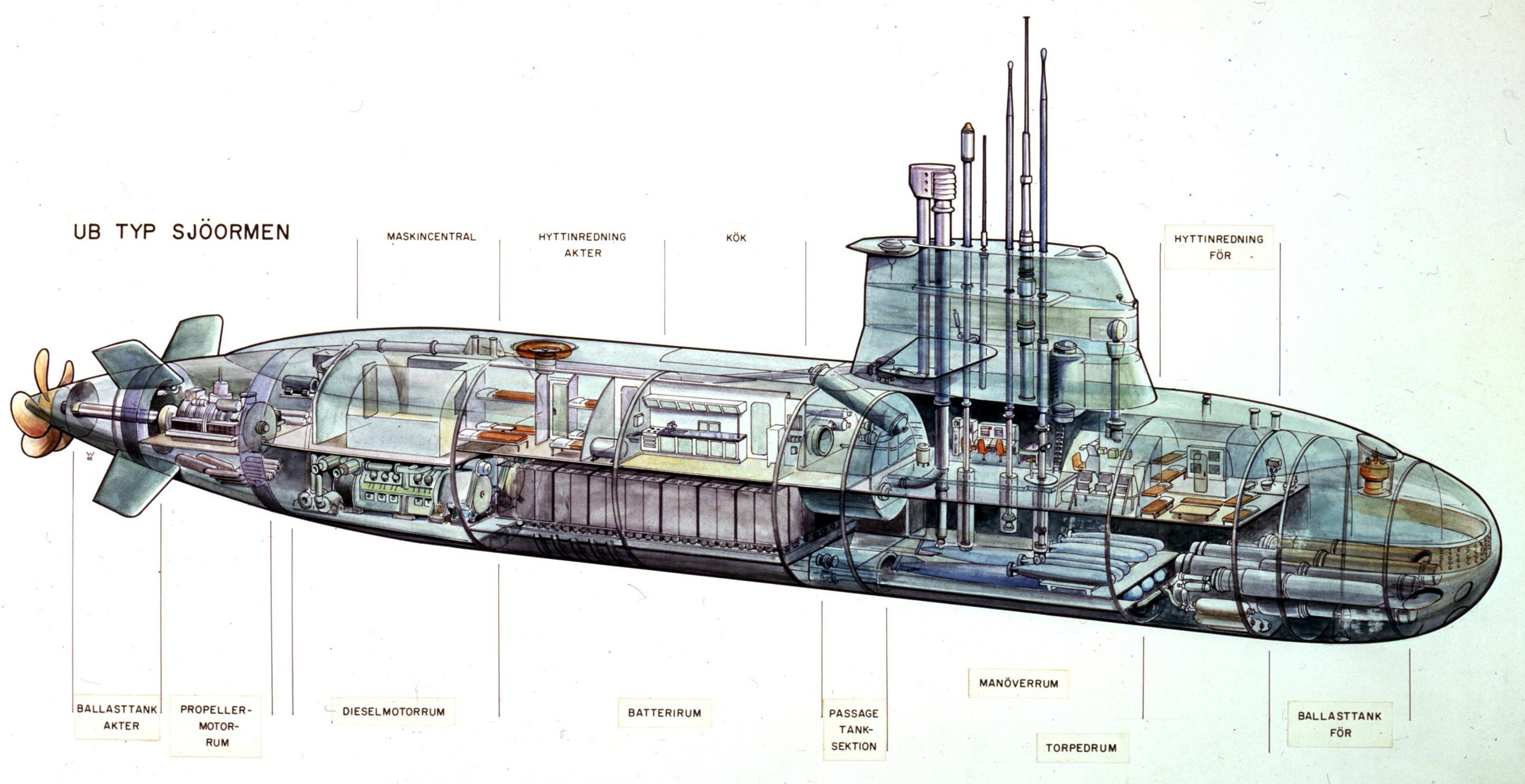 a11_cutaway.jpg