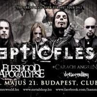 SepticFlesh (Gr), Fleshgod Apocalypse (It), Carach Angren (Ne), Descending (Gr), The Konstellation@ Club 202, Bp., 2013.05.21.