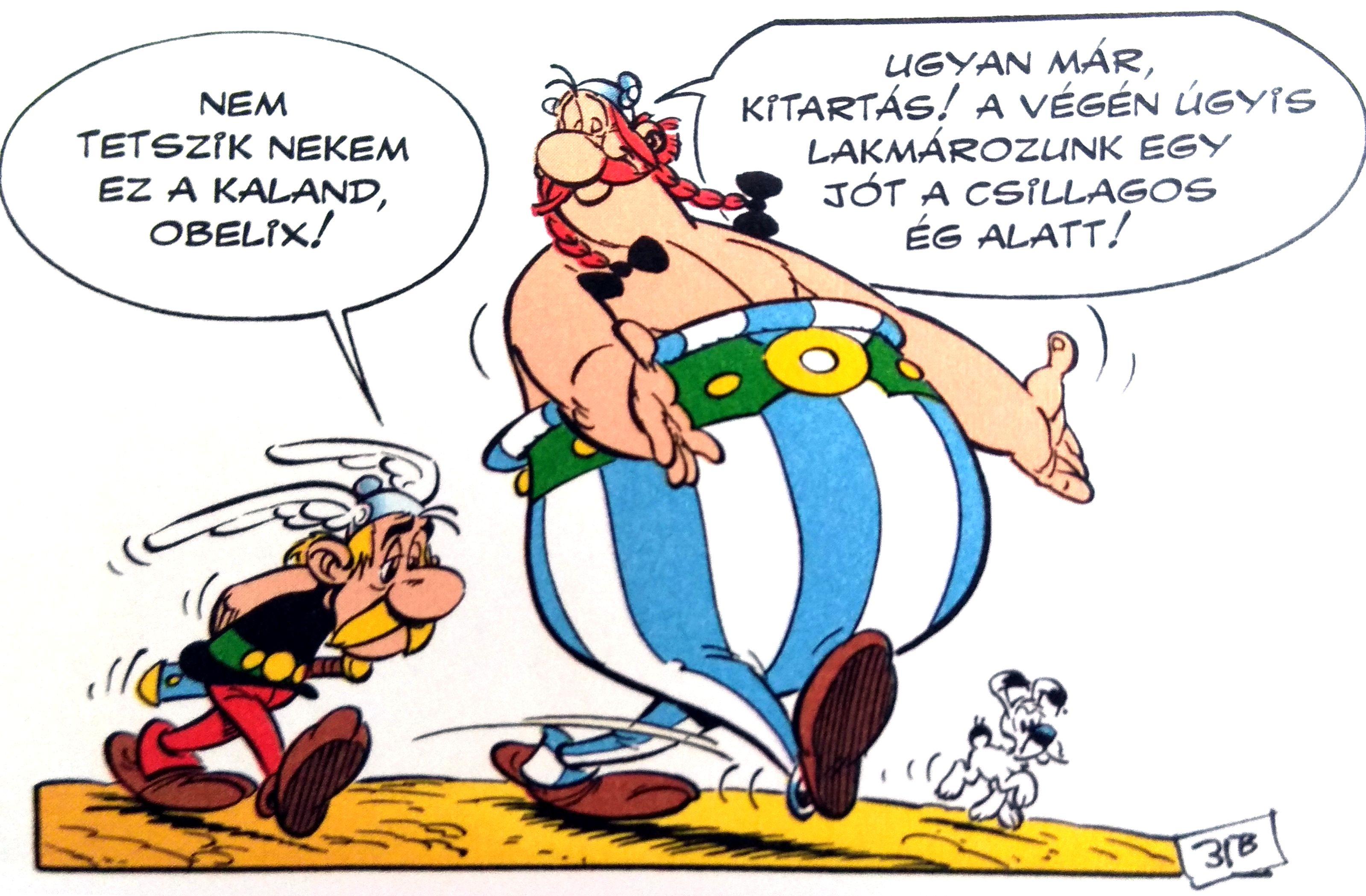 asterix_27_asterix_fia_csillagokalatt.jpg