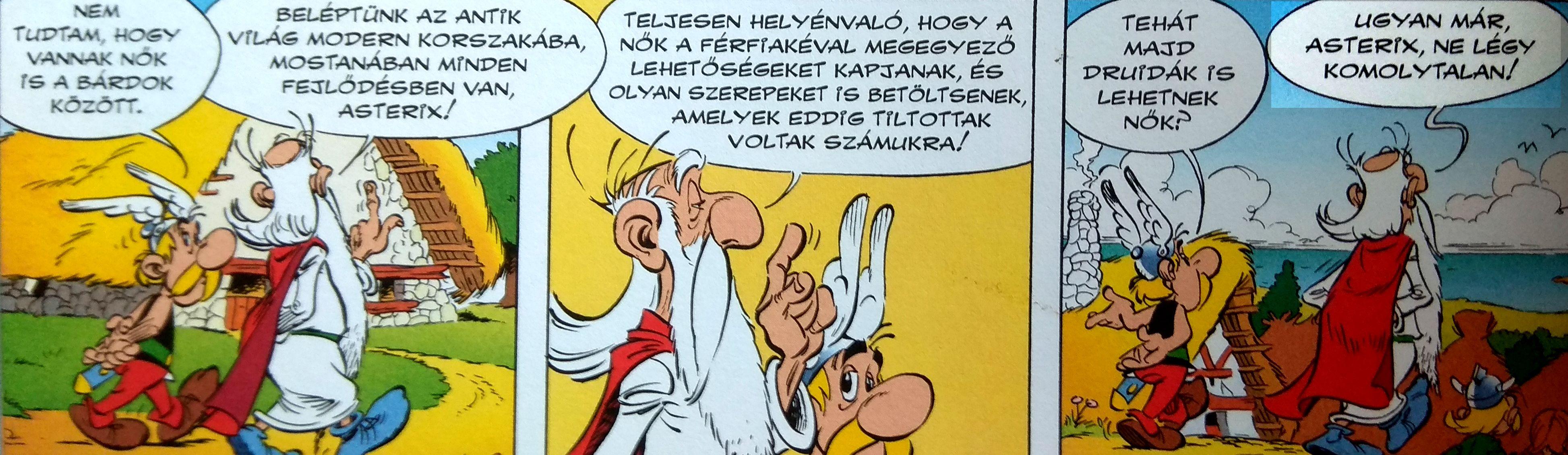 asterix_29_rozsa_es_kard_panoramix2.jpg