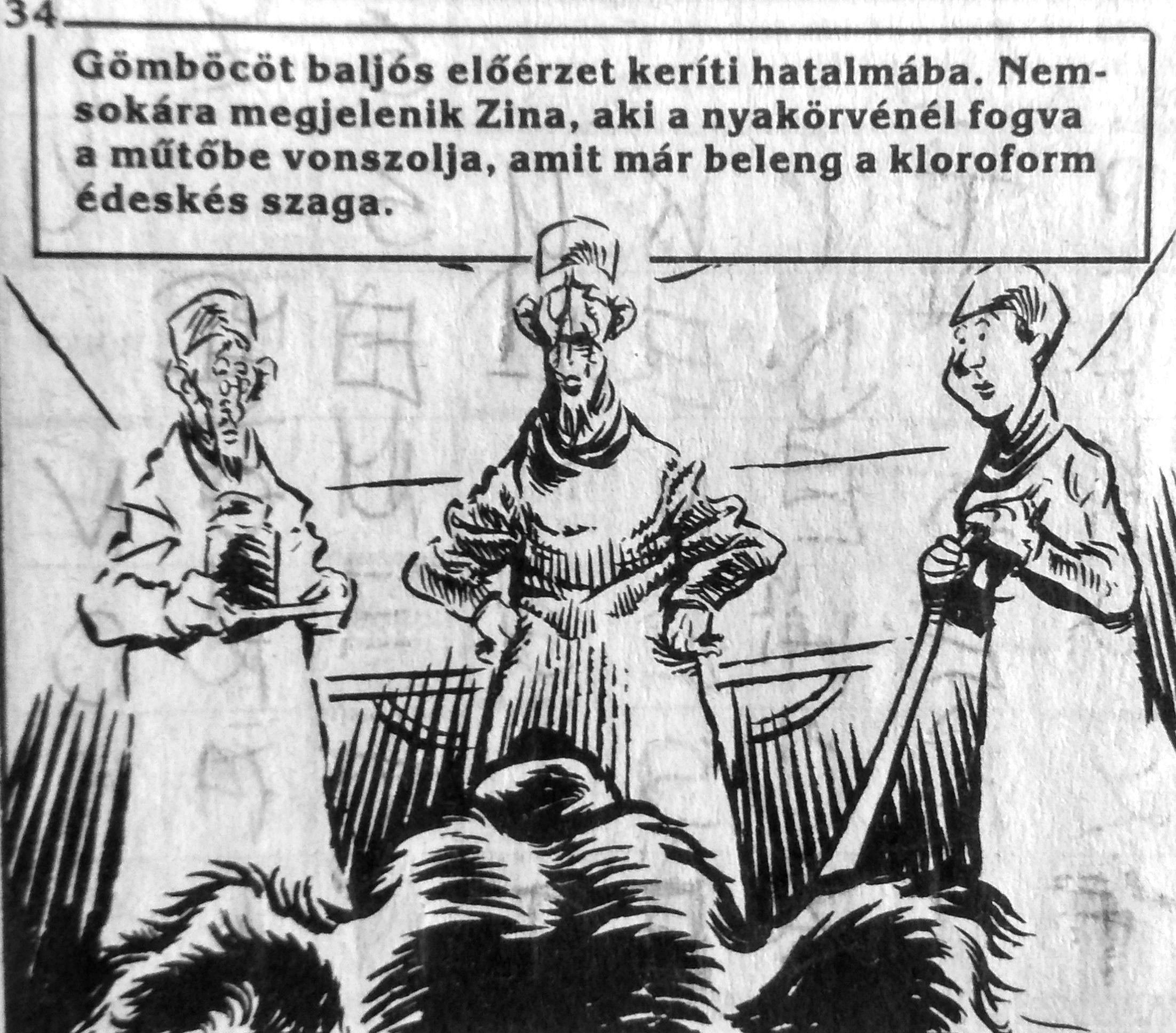 bulgakov_fekete_kutyasziv_4.jpg