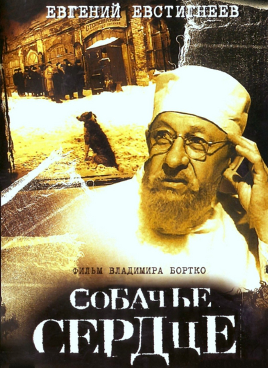 bulgakov_kutyasziv_film1.jpg