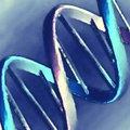 Nosce te ipsum - 23andme.com