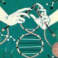 Miért nem mentünk el egyszer sem genetikai ultrahangra