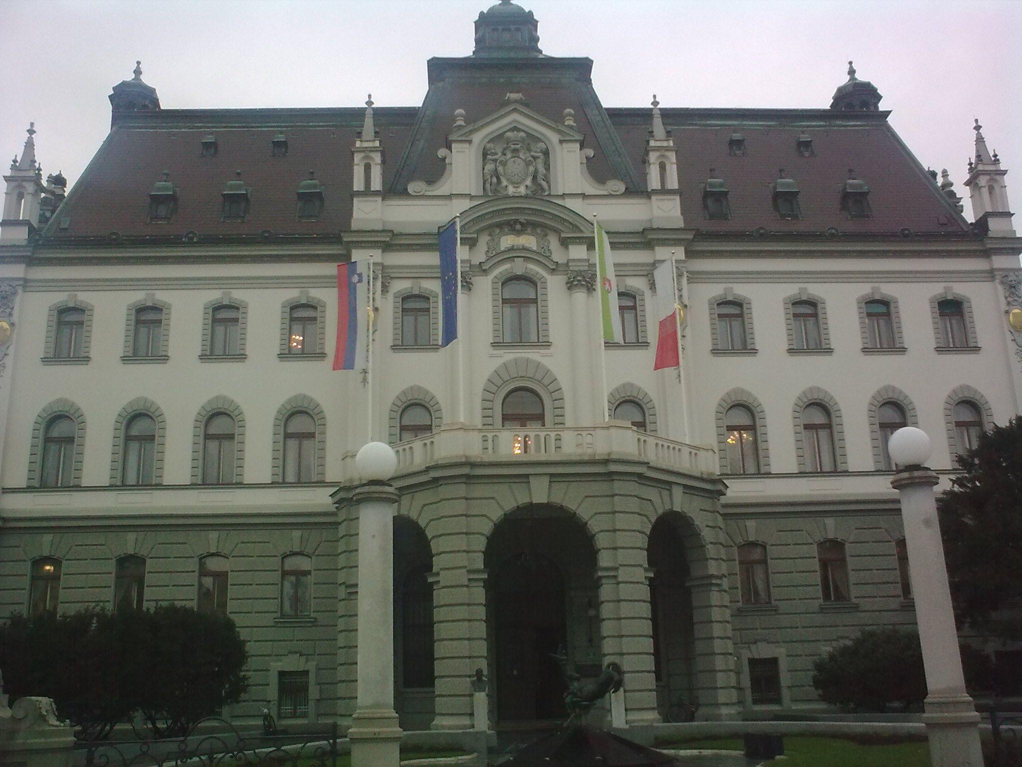 Az Egyetem