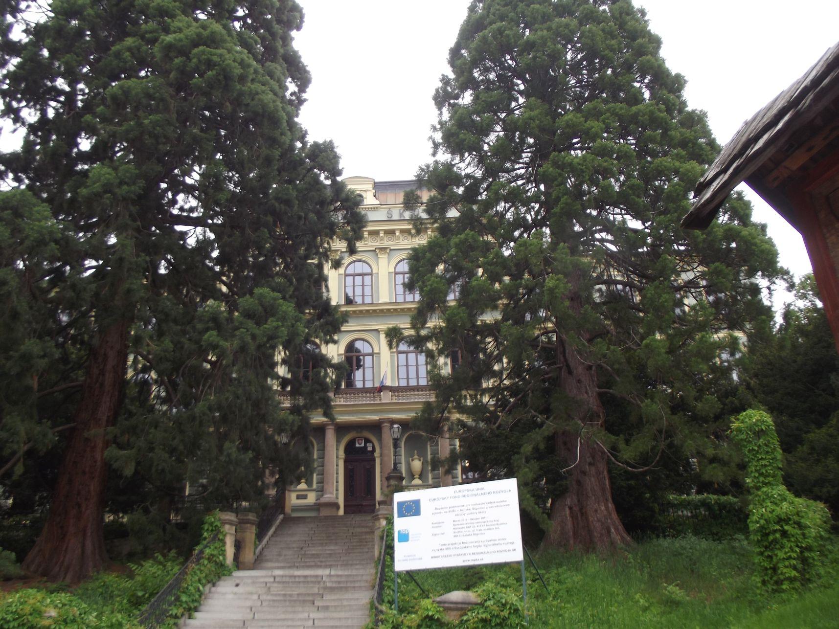 Bányászati és Erdészeti Főiskola