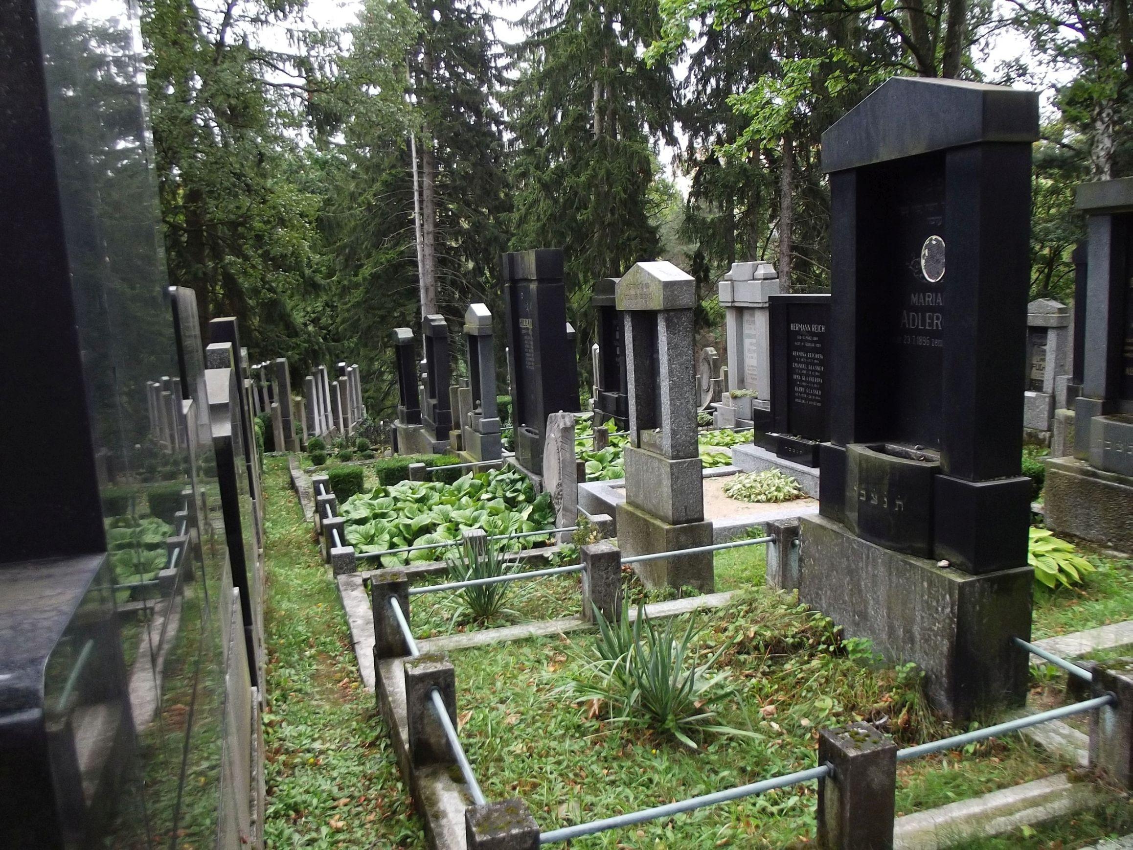 Třebič, zsidó temető