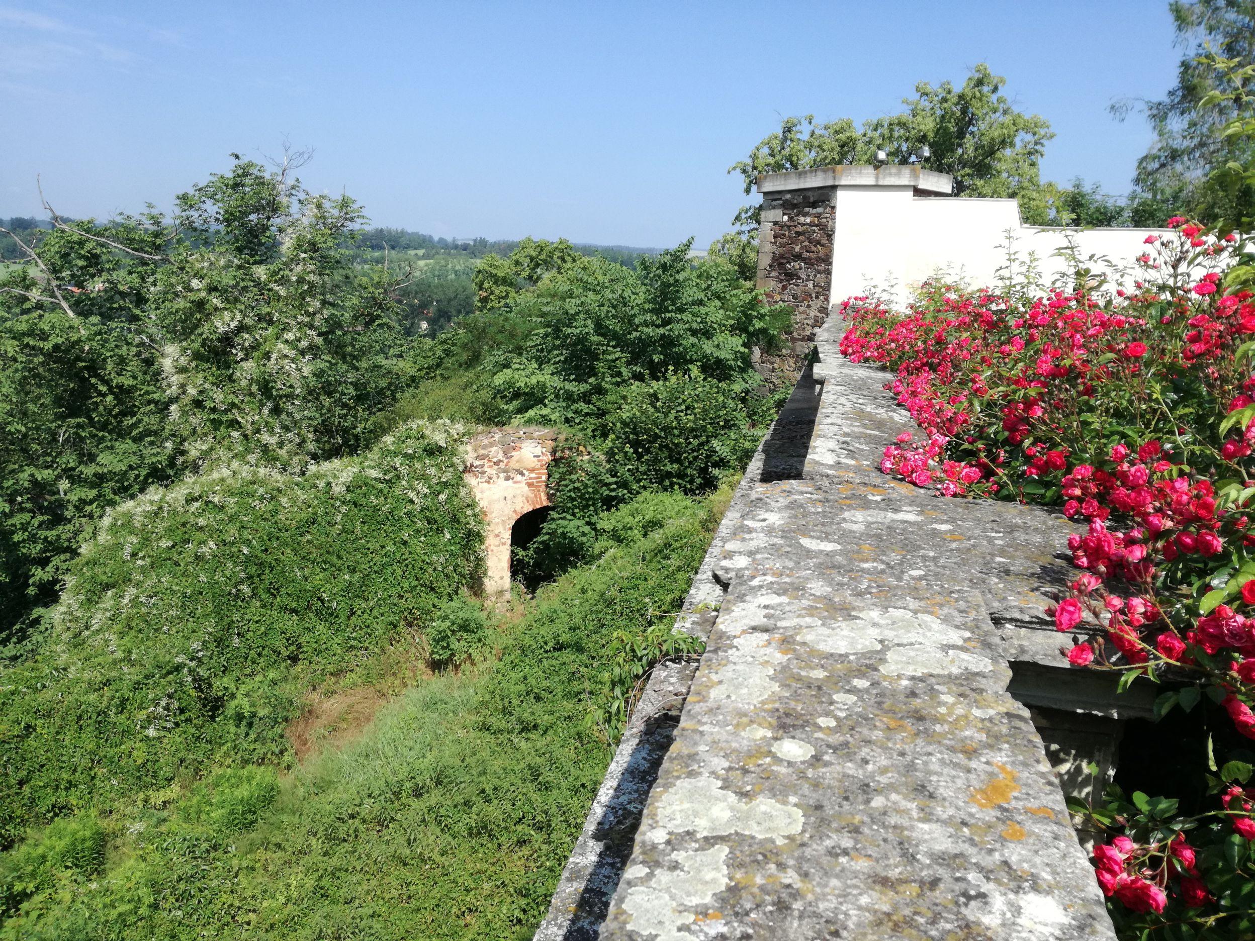 A vár romos falai