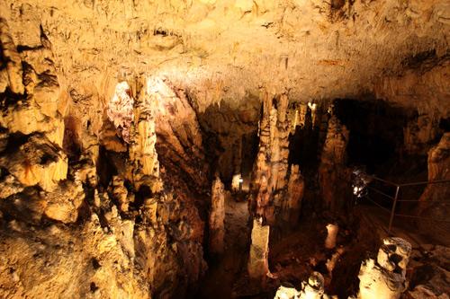Biserujka, Ciprus terem (Forrás: www.spilja-biserujka.com.hr)