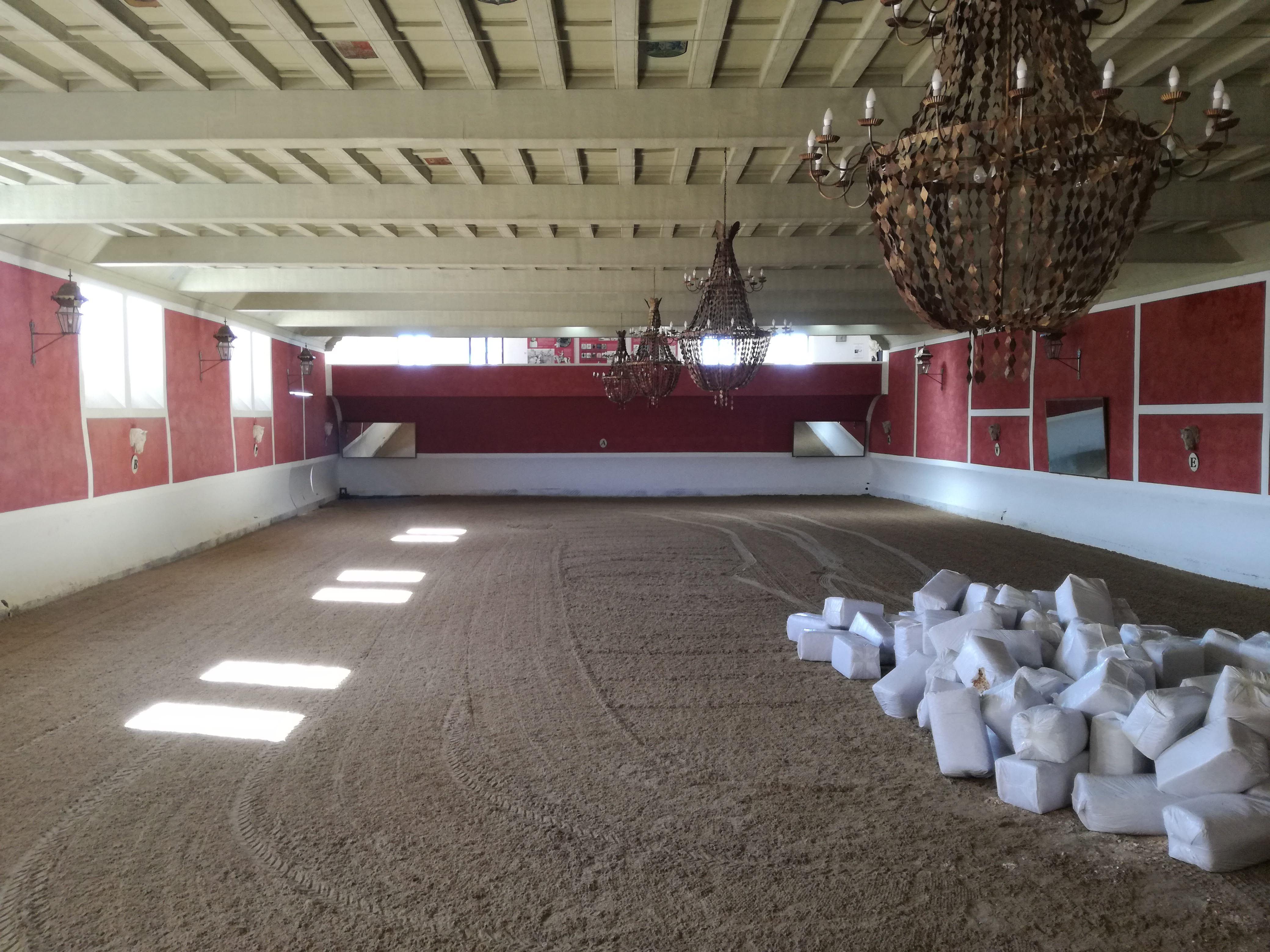 Bikaviadal aréna