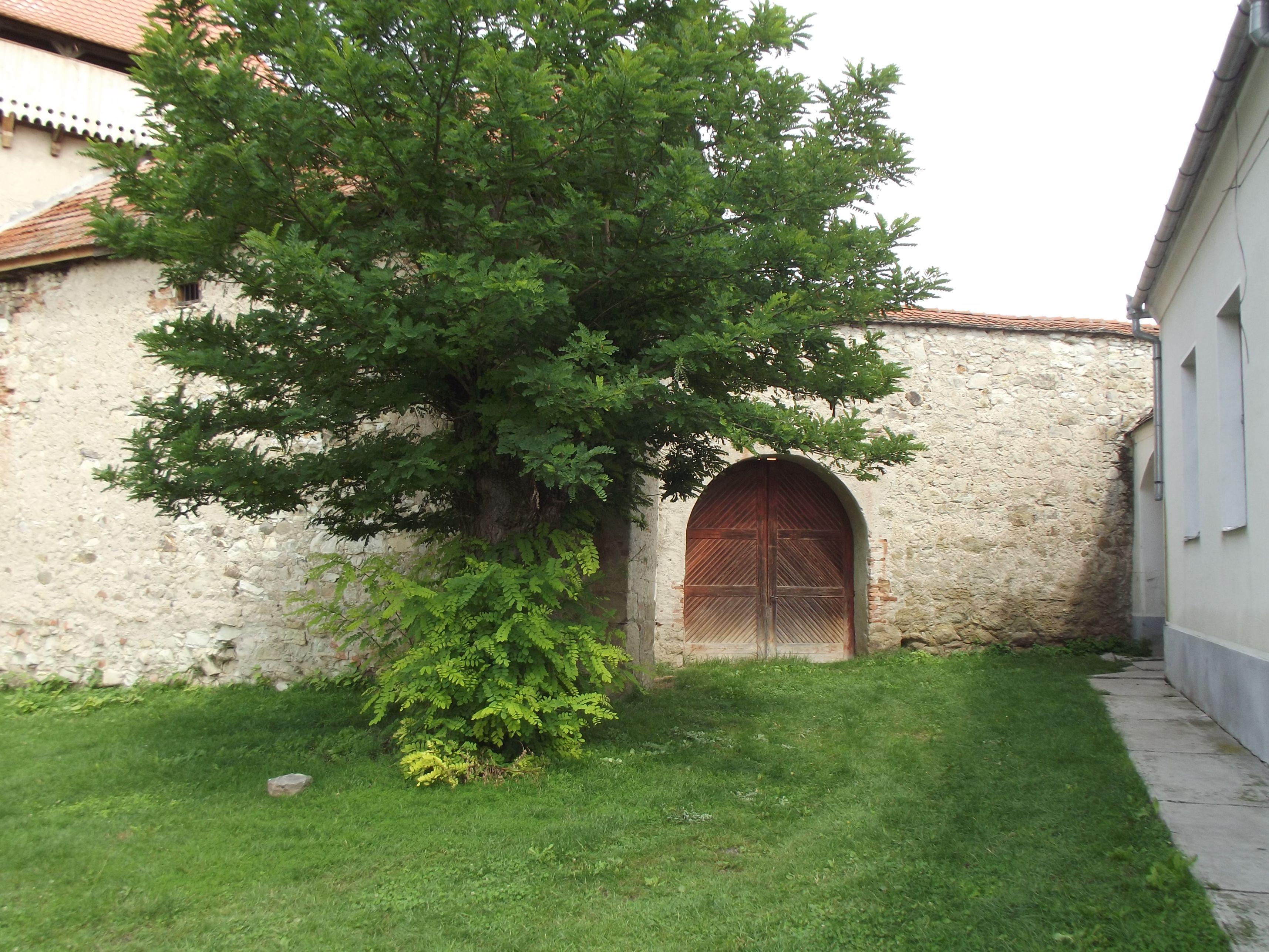 Kaca, templomvár