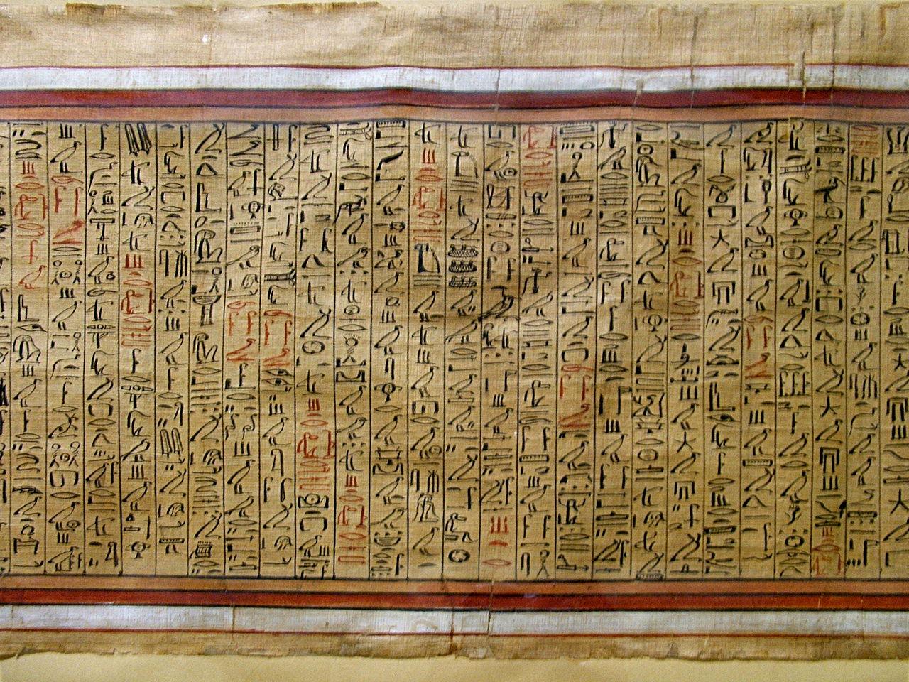 16_Papirusz az Egyiptomi Múzeumban (Forrás: www.wikipedia.com)