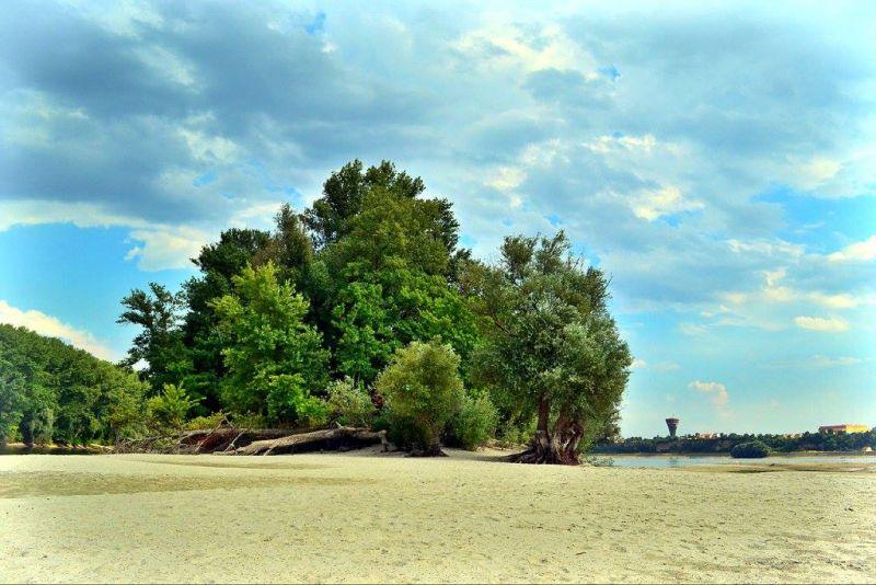 Ada sziget (Forrás: www.turizamvukovar.hr)
