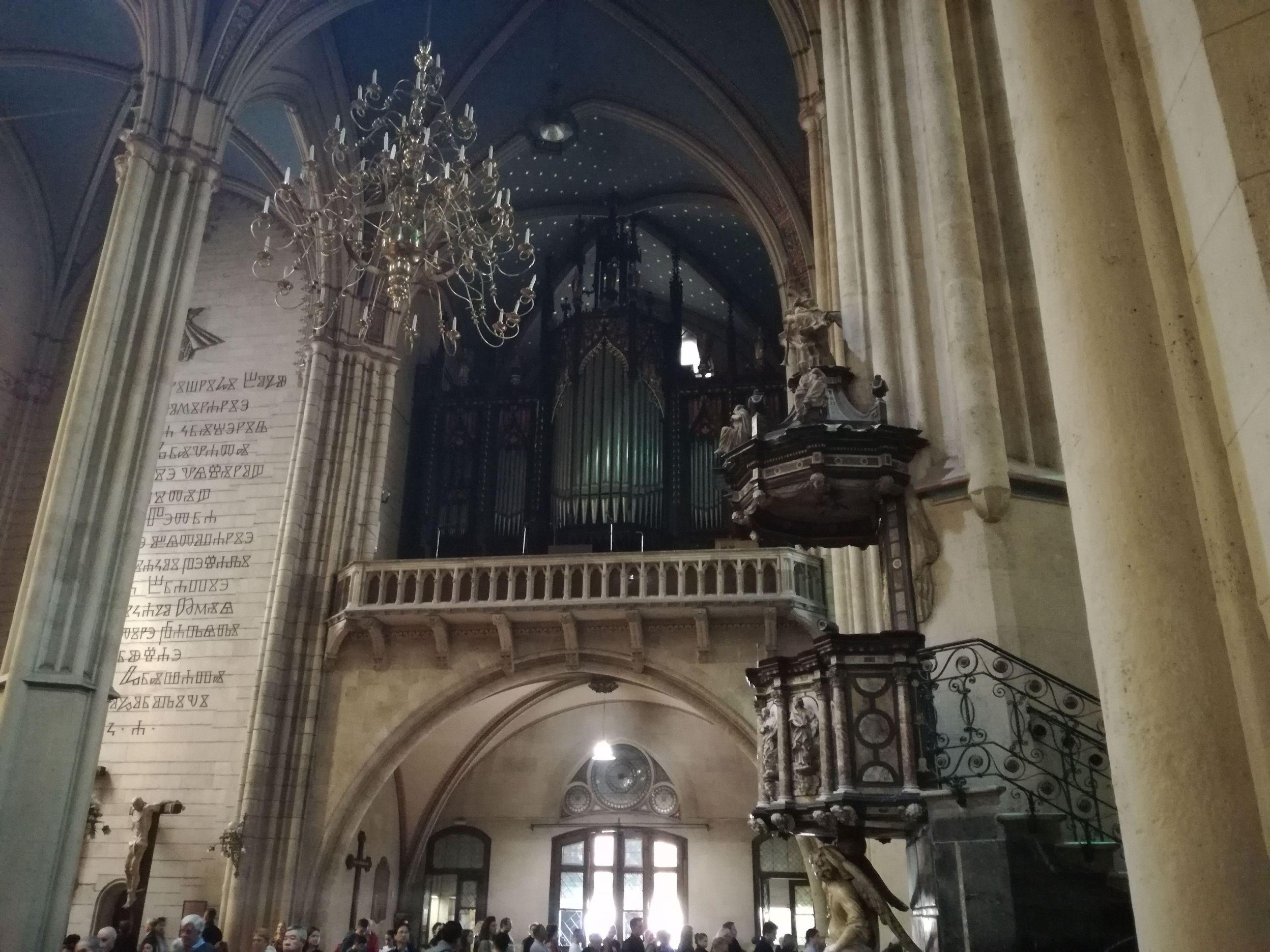 Az orgona