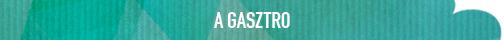 BusinessCard_tema_feliratok_GASZTRO.jpg