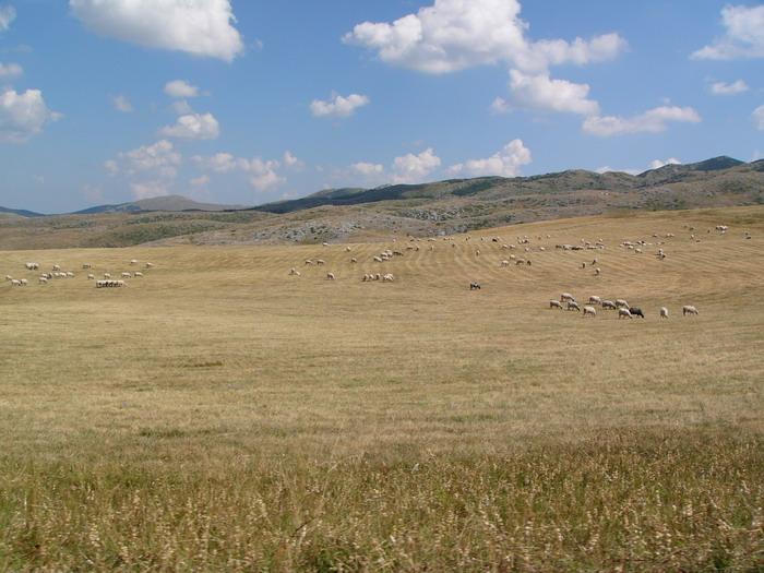 utban Durmitor Nemzeti Park felé
