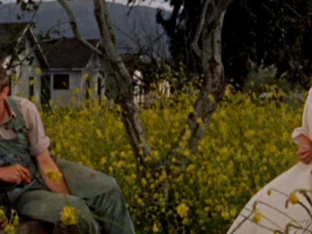 FILM: Édentől keletre