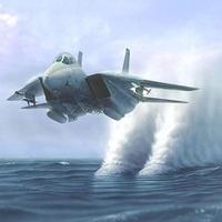 MAKETT: Grumman F-14 Tomcat