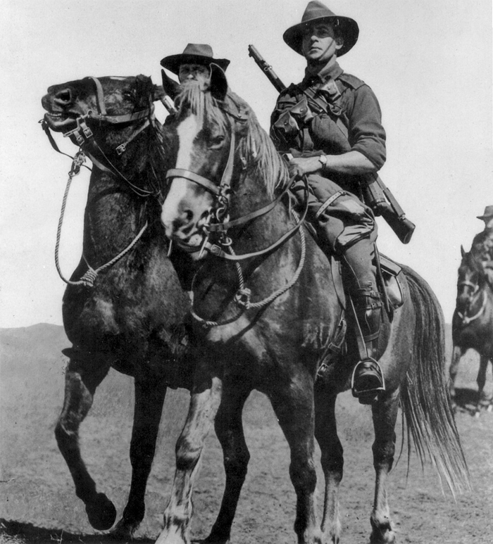 australian_light_horse_brigade_aif_gallipoli1.jpg