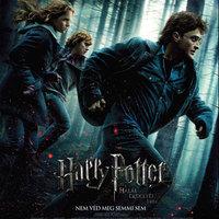 Harry Potter és a Halál Ereklyéi (Harry Potter and The Deathly Hallows)